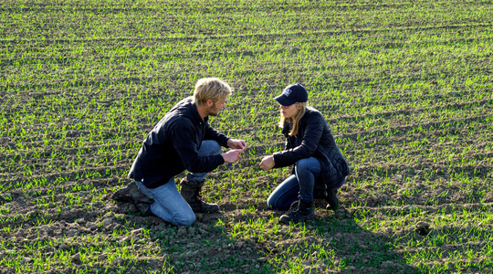 Managing crop stress under cold and dry conditions