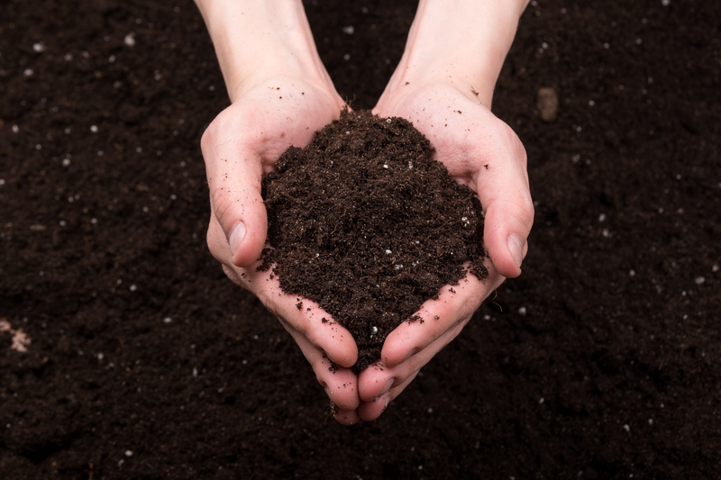 Soil / Compost in Hands